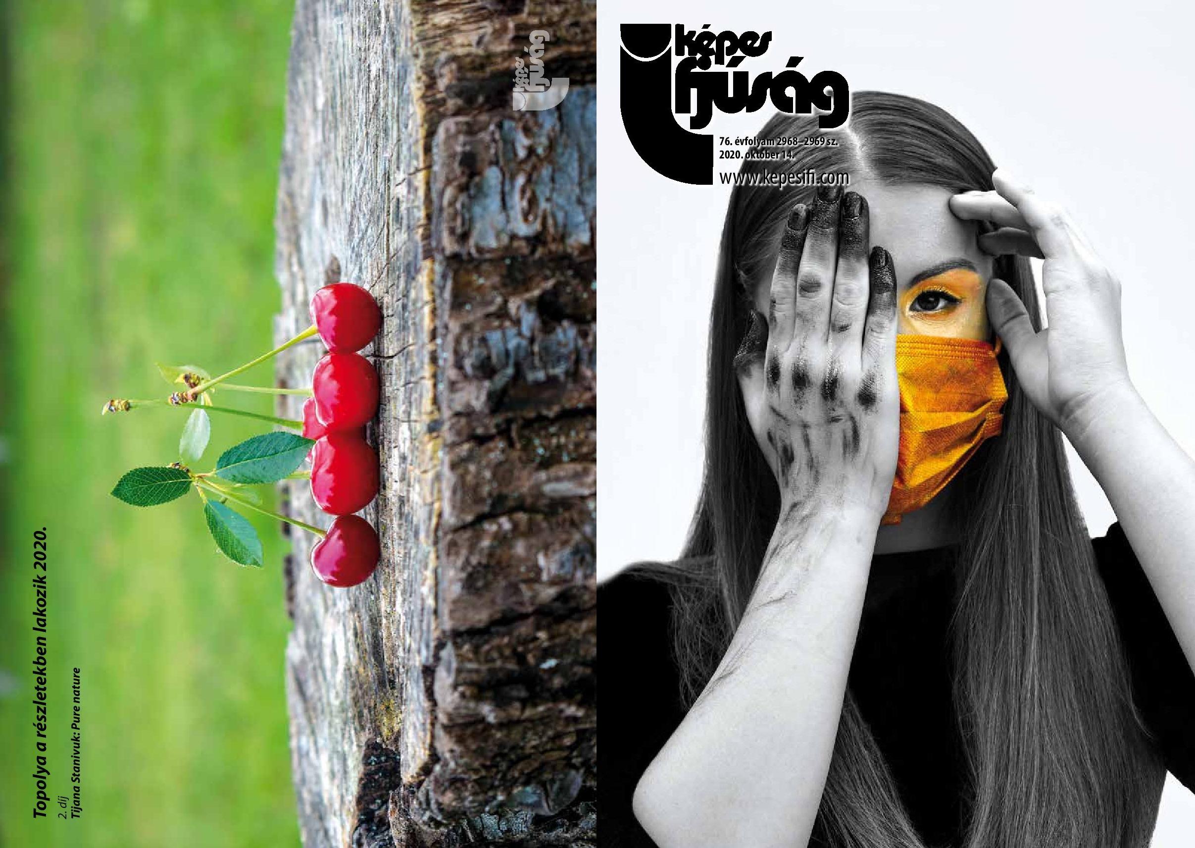 Címoldal: Magosi Máté Hátsó oldal: Topolya a részletekben lakozik 2020 – Tijana Stanivuk